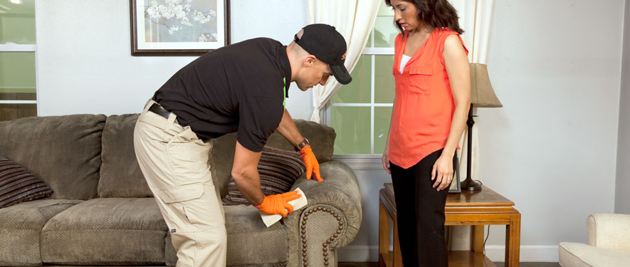 Lincoln, NE carpet upholstery cleaning